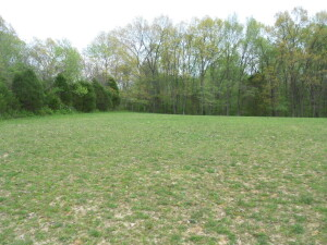 13 ACRES - 3 PARCELS - Midway Community - Online bidding ends May 8