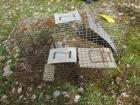 Large and small animal trap