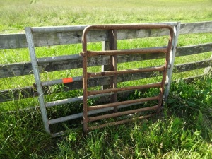 2 Gates: 4' Red and Heavy Duty 4'x6' Silver