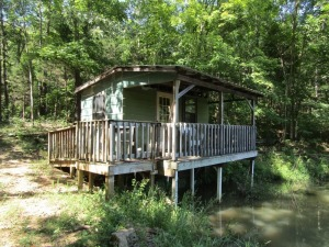 Parcel 5: 24.034 acres, all wooded with young timber, rustic 1 room cabin w/ deck overlooking a small pond. This cabin is off the grid and fronts Smiley Basham Lane. ALL LOTS WILL REMAIN OPEN FOR BIDS UNTIL BIDDING ON EACH LOT HAS ENDED.