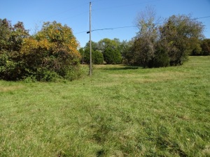 PARCEL 3: Fairground Road,  1.510 Acres
