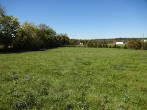 PARCEL 4: Fairground Road, 1.521 Acres
