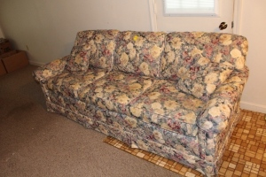 Floral patterned sofa with 2 pillows